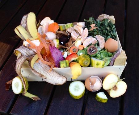 organic waste: Fresh organic waste for composting