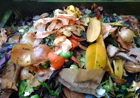 Compost dans le jardin Banque d'images - 61233607
