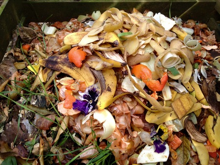 Fresca biorresiduos y el compost en el jardín