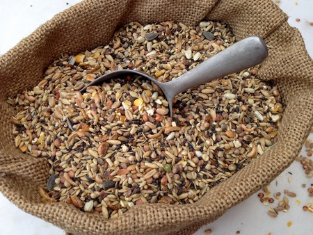 wheat kernel: Chicken feed with many different sorts of grain in a small bag on a marble plate