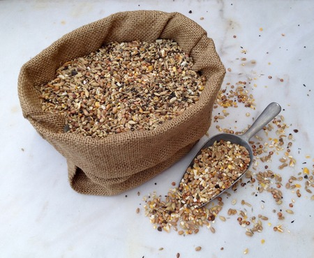 Chicken feed with many different sorts of grain in a small bag on a marble plate