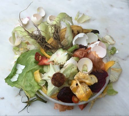composting: Fresh bio-waste in a small plastic cup for composting Stock Photo