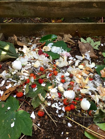 dumpster: Fresh organic waste and compost with rose hips in the garden