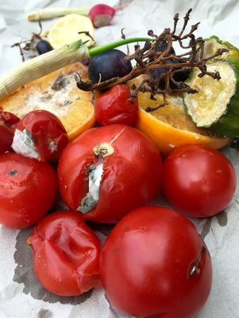 rotten fruit: Different sorts of rotten fruit and vegetables on gray paper