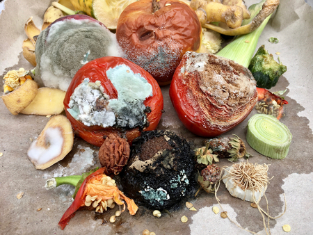 dumpster: Different sorts of red fruits and vegetables on gray paper in closeup Stock Photo
