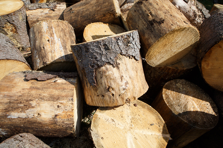 Felled tree trunks in a pile. Background and texture of wood. Logging in the village. Stock Photo