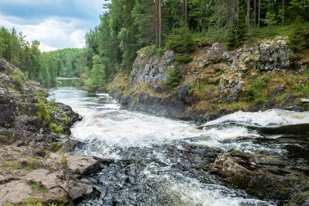 north cascade national park: Powerful waterfall Kivach the beautiful forests of North Karelia. Northern rivers on the rocky ledges.