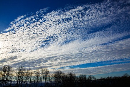 Landscape sunset over the winter forest and flying clouds. Stock Photo