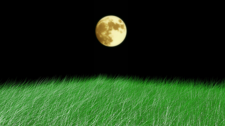 Grass sways on a black background.