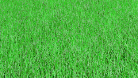 Grass sways background.
