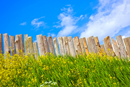 Pastoral views on palisade from wooden boards. Fence is a village full of flowers. Rural life outside the city. Landscape on bright flowers and a wooden fence on a ranch. Pasture for livestock. 写真素材