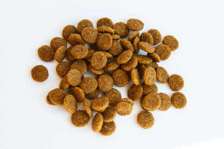Nutrition food of dogs and cats on an isolated background for the animals.
