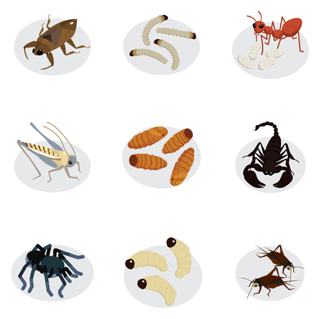 edible worms and insects cartoon style