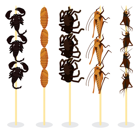 mealworm: edible insects on sticks for sell Illustration