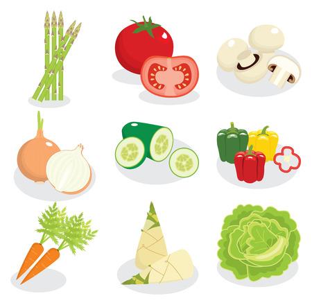 shoot: vegetable vector, cartoon style Illustration