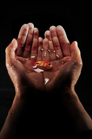Hand holding goldfish black background photo