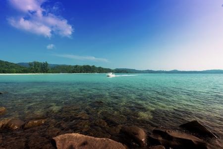 coastline: Tropical Coastline Landscape