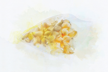 meshed: Digital painting Garlic in mesh bag  on white background Stock Photo