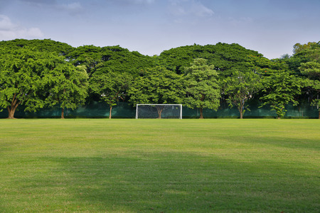 bounds: soccer goal with trees in the background