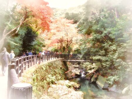 Digital painting , Illustration Meiji-no-mori Mino Quasi-national Park (Mino Waterfall)