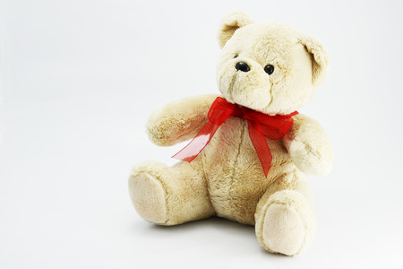bear doll: teddy bear doll