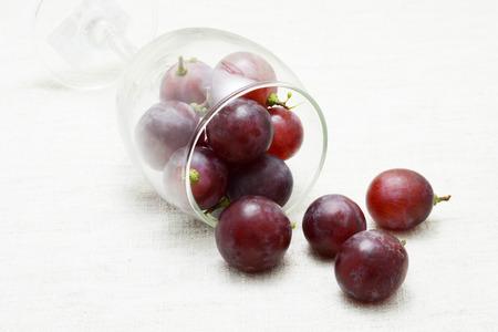 redwine: grapes Stock Photo