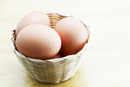 gallina con huevos: huevos de gallina