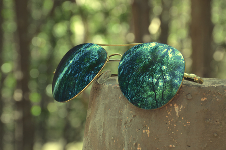 reflect: sunglasses reflect forest