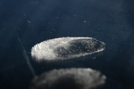 finger print: finger print Stock Photo