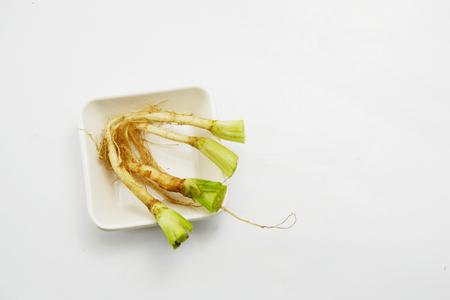 culantro: raíz de cilantro