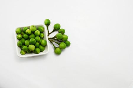 berry: turkey berry