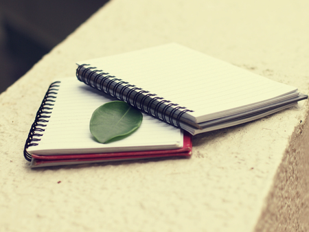 note booklet: daily book