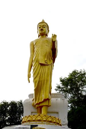 buddha image: stand Buddha image
