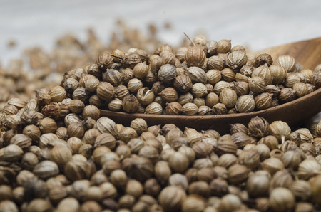 coriander seeds for cooking Stock Photo