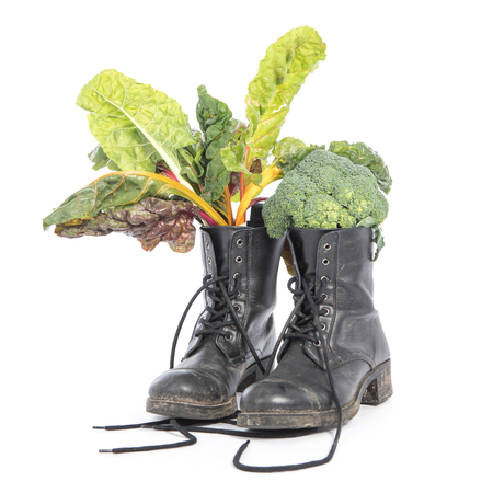 Vegan world: Vegan and cruelty free boot, dirty and used with fresh vegetables inside, on a white background