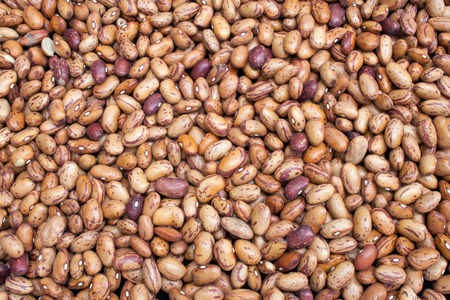 """pinta: A flat image of Pinto Beans also known as alubia pinta alavesa or the Alavese pinto bean"""". Pinto bean varieties include: Burke Othello, Maverick & Sierra. This image is suitable for cans and packet labels. Stock Photo"""