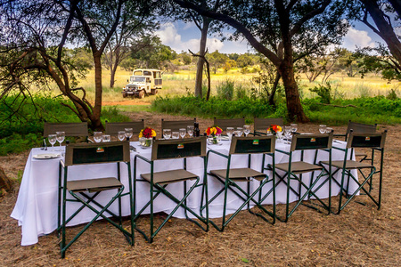 game viewing: A safari game drive vehicle is parked close to a breakfast setting in the African bush. Tourists are treated to a bush breakfast after game viewing in the Cradle of Humankind, South Africa.