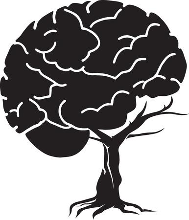 raices de plantas: Arte de la ilustraci�n de un cerebro de �rboles con fondo blanco Vectores