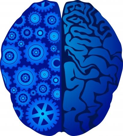 cognicion: Arte de la ilustración de un engranaje cuenta con fondo blanco Vectores