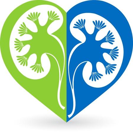隔離された背景を持つ愛形状腎臓ロゴのイラスト アート