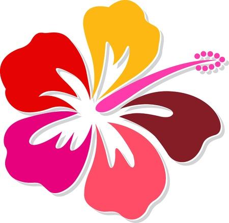 Illustratie kunst van een hibiscus met geïsoleerde achtergrond