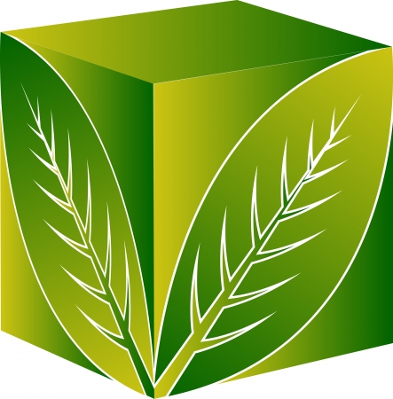 Art Illustration d'un logo de la feuille carrée avec fond isolé Banque d'images - 21918398