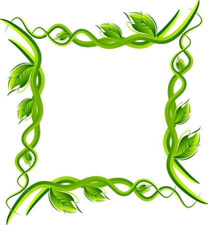 green leafs: illustration art of leafs frame border with isolated background
