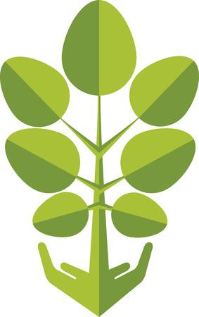 eco slogan: Arte de la ilustraci�n de una planta de la mano Vectores