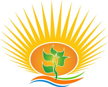 eco slogan: Arte de la ilustraci�n de una hoja de sol