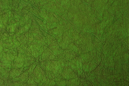 dark green background with paper texture photo