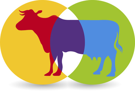 Illustration art of a cow icon with isolated background Vector