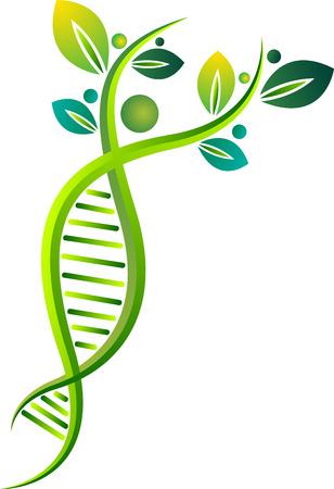 Illustratie kunst van een Eco DNA pictogram met geïsoleerde achtergrond Stockfoto - 63156838
