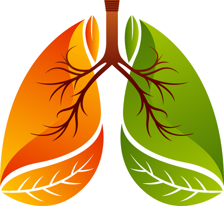 Illustration art of lungs icon design isolated background