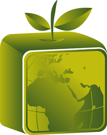 Illustration art of a square fruit globe icon with isolated background